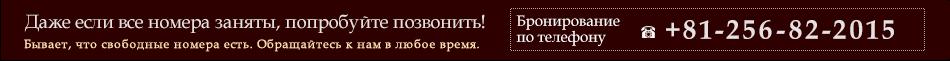+81-256-82-2015